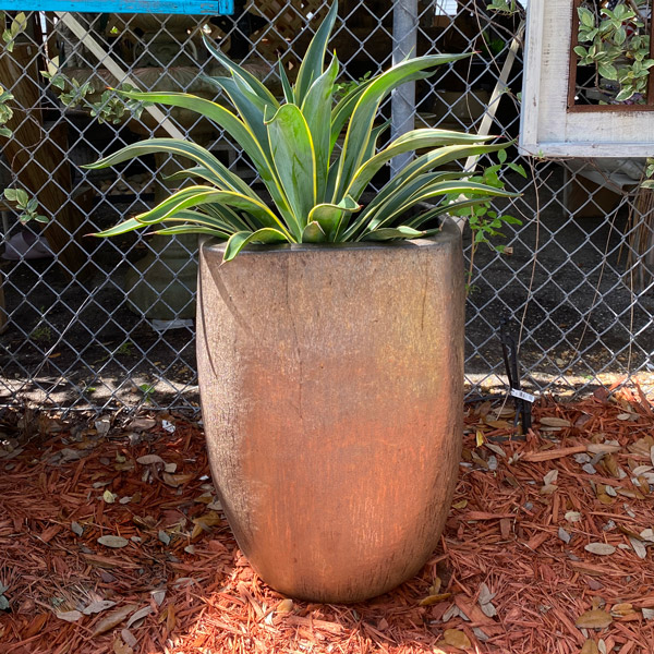 Ethans Courtyard and Patio | Bronze Outdoor Planters