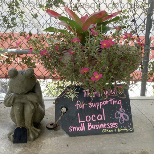 Ethans Courtyard and Patio | Medium Frog Statue| Bonita Springs | Water Fountains, Wall Fountains, Mailboxes, and more