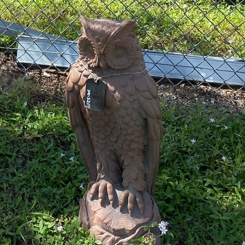 Ethans Courtyard and Patio | Owl Statue | Bonita Springs | Water Fountains, Wall Fountains, Mailboxes, and more