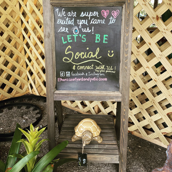 Ethans Courtyard and Patio | Turtle Sculpture | Bonita Springs Outdoor decor Store | Water Fountains, Wall Fountains, Mailboxes, and more